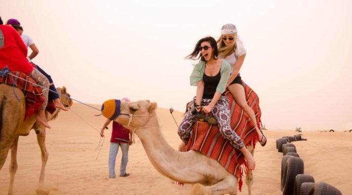 safari-em-dubai-roda-mundo-intercambio