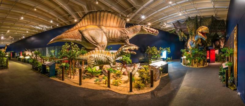 Queensland-Museum-Brisbane