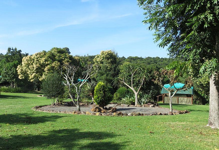 Monkey Sanctuary Roda Mundo (1)